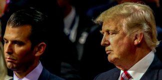 Trump Jr. Responds to RINOs