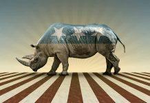 Liz Cheney Reveals Future With GOP