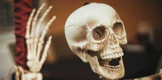 Researchers Make 7,200-Year-Old Discovery